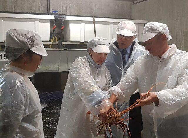 Visite d'acheteurs - Sanfod, groupe agroalimentaire chinois. Crédit photo : BCI